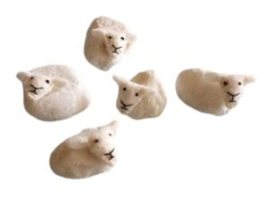 Vijf schaapjes Pippilotta