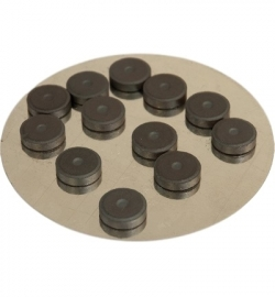 12 magneetjes