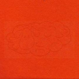 Dik Wolvilt Oranje