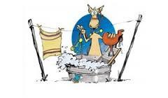 - Wassen & herstellen van paardendekens, zadeldoeken, enz