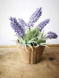 Namaak lavendel in rustiek potje