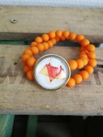 Vos in oranje
