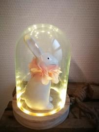 Stolp met lichtjes en konijn