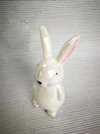 Effen wit konijn
