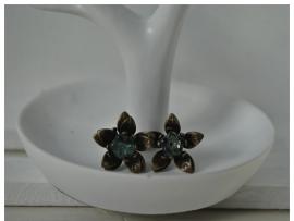Blauw brons roosje