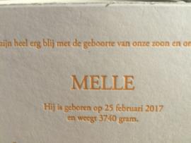 Oranje geruit oudhollands strikjeskaartje