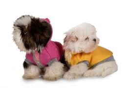 I Love My Dog Hoodie Sugar Baby, Pink  Maat  XS en SM