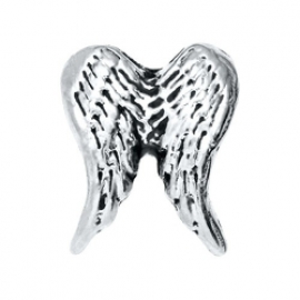 Floating Locket Charm Wings