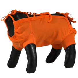 Grande Finale Medical Pet Suite, Oranje