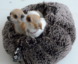 Bessie and Barnie Cuddle Pod Frosted Willow, Brown