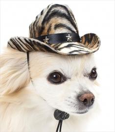 Puppe Love Cowboy hondenhoedje, Tijger