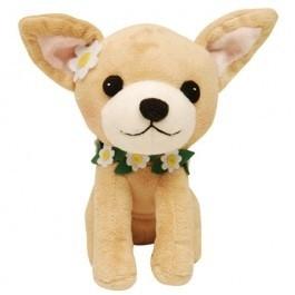 PetLondon Kiki Chihuahua