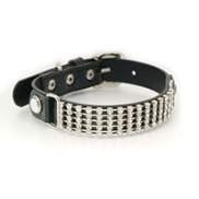 Puppy Angel Dazzling Diamond Collar, Black Maat XL