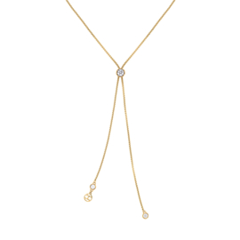 Tommy Hilfiger - Ketting Staal/Goud