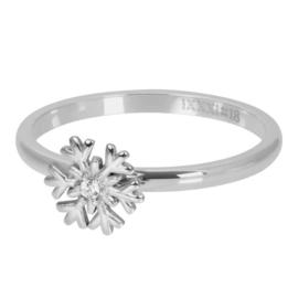 iXXXi vulring - Snowflake