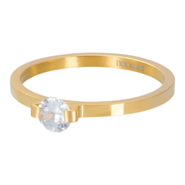 iXXXi  Vulring Mini glamour Stone - 2mm Goud