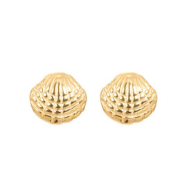 iXXXi Ear Studs - Shell