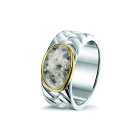 Asring 14 krt. zilver/goud of rosé (ROR 003 Y) € 299,00