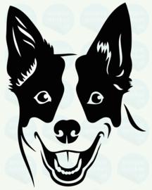 auto sticker • australian cattle dog