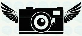 auto sticker • camera 4