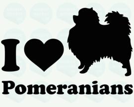 auto sticker • I love pomeranians