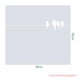 raamfolie op maat • Vogels op draad • 98 x 90 cm
