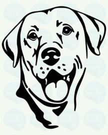 auto sticker • labrador retriever