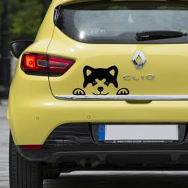 auto sticker • akita inu