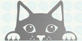 kattenkopje
