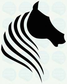 auto sticker • paard 7