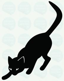 auto sticker • kat