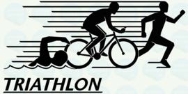 auto sticker • triathlon