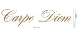 individueel project • Carpe Diem • 40 x 10 cm
