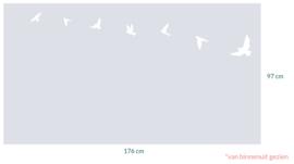 raamfolie op maat • Vogels