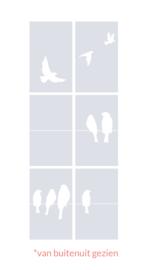 raamfolies op maat • Vogels en Vogels op draad • 6 stuks