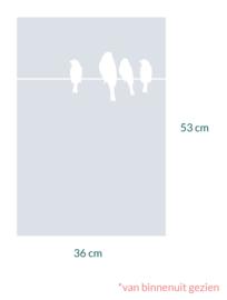 raamfolie op maat • Vogels  op draad • 36 x 53 cm