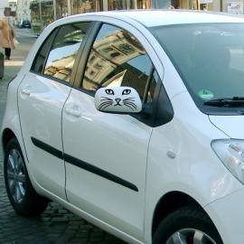 auto sticker • kat 9
