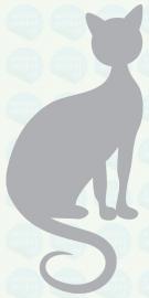 auto sticker • kat 8