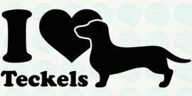 auto sticker • I love teckels