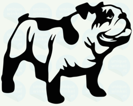 auto sticker • old english bulldog