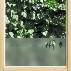 statische raamfolie • Vogels op een draad