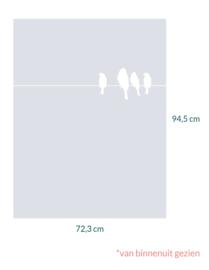 raamfolie op maat • Vogels  op draad • 72,3 x 94,5 cm