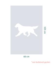 raamfolie op maat • Flatcoated Retriever • 66 x 101 cm