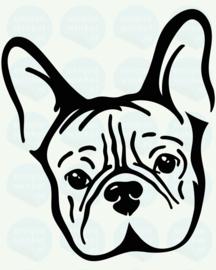 auto sticker • franse bulldog kop