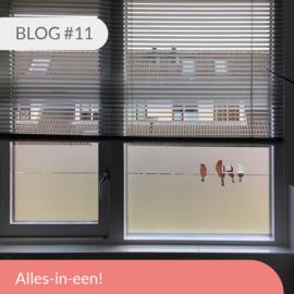 Blog #11 • Alles-in-een!