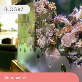 Blog #7 • Voor overal