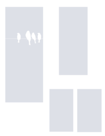 raamfolies op maat • Vogels op draad • 3 stuks