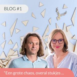 Blog #1 • Een grote chaos, overal stukjes ...