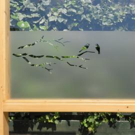 statische raamfolie  •  Vogels op tak