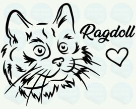 auto sticker • ragdoll